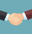 robust handshake businessmen business team vector image