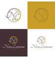 simple initials photographer logo vector image
