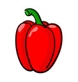 bell pepper colored doodle hand drawn sketch vector image vector image