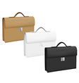 Business suitcases set vector image vector image