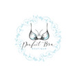 emblem woman lingerie theme with lettering vector image vector image