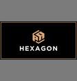 pa hexagon logo design inspiration vector image vector image