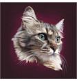 realistic cat head mascot logo design vector image