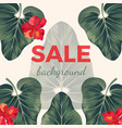 sale background with exotic tropical leaves and vector image vector image