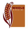 whole grain product emblem with ripe spike and vector image vector image