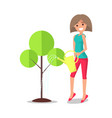 adult woman watering tree from metal can vector image vector image
