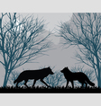Forest wolves vector image