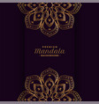 golden mandala decorative background design vector image