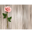 Single pink rose on an old wooden background vector image vector image