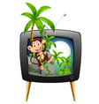 TV screen with monkey on the tree vector image vector image