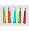 colorful chemical in test tubes vector image vector image
