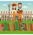 couple farmers vegetable basket field fence vector image vector image