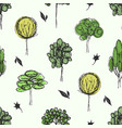 drawing forest background vector image vector image