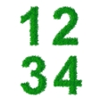 Green grass alphabet vector image vector image