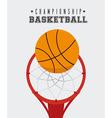 Sport design vector image vector image