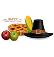 thanksgiving traditional hat and pie vector image vector image