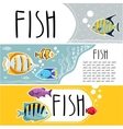 Colorful reef fish horizontal flyers vector image