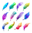 feather colored stylized decorative tribal vector image vector image
