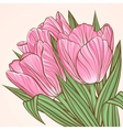 Floral background with flowers of tulips vector image vector image