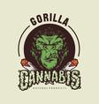 gorilla cannabis logo vector image vector image