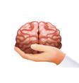 hand holding human brain mind organ science vector image