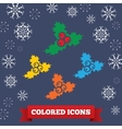 Holly berry icon Christmas symbol Colored vector image vector image