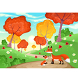 Landscape with family of foxes vector image