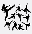 Martial art 2 male and female silhouettes vector image vector image
