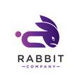 rabbit head animal logo design vector image vector image