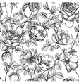 Rose pattern white vector