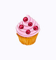vanilla cupcake with red berry whipped cream vector image
