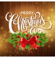 Christmas holly wreath with text banner vector image