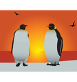 antarctica penguins vector image