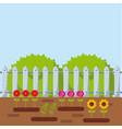 beautiful garden design vector image vector image