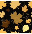 golden leaves vector image vector image
