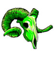 green color goat skull head vector image vector image