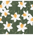 Seamless jonquil flower pattern background vector image vector image