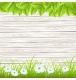 wall with grass vector image