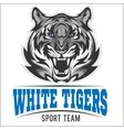 White tiger head vector image vector image