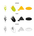 isolated object of cornfield and vegetable sign vector image