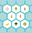 set of fruit icons flat style symbols with dragon vector image