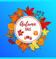 autumn fall sale poster with color leaves vector image vector image
