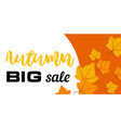 big sale autumn banner horizontal flat style vector image