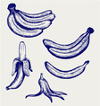 Bunch of bananas peeled banana and banana peel vector image vector image