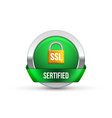 ssl secure protection symbol ssl security vector image vector image