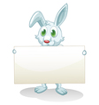 A bunny holding an empty banner vector image vector image