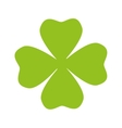 clover plant ecology vector image