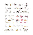 cute cartoon farm animals and birds funny horses vector image vector image