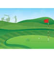 golf course green vector image