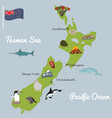 new zealand tourist map with famous landmarks vector image vector image